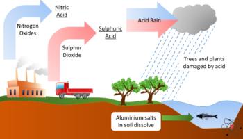 Acid rain due to the release of acidic gases through human activity. Acid rain damages ecosystems